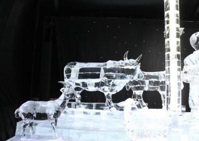 Ice (71)