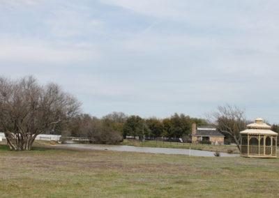 202003_TexasTulips (58)